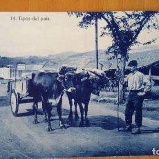 Postales: 14 TIPOS DEL PAÍS - SIN EDITOR - SIN CIRCULAR. Lote 101122175