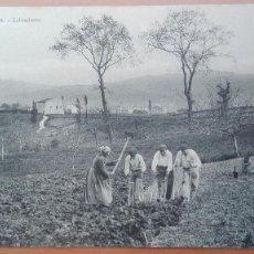 Postales: POSTAL FUENTERRABIA Nº 45 LABRADORES EDIC AU PALAIS DE CRISTAL HENDAYE GUIPUZCOA PAIS VASCO OFICIOS. Lote 104012467