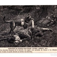 Postales: BILBAO.- AGOSTO 1915. CONCURSO DE PERROS SANITARIOS.. Lote 108842799