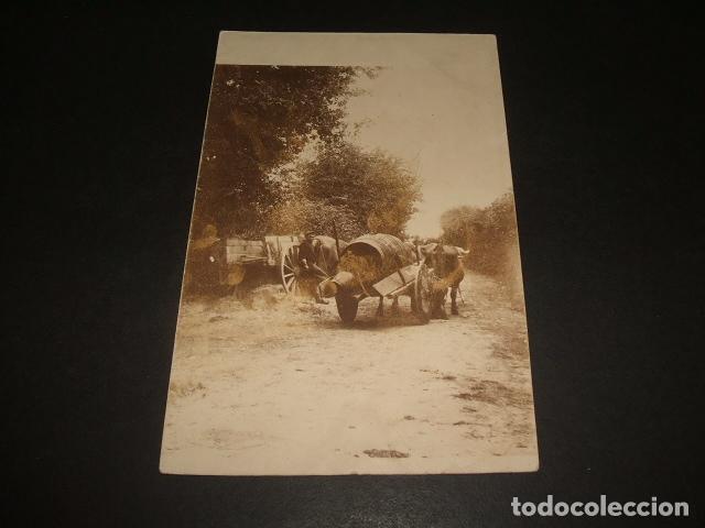 SAN SEBASTIAN CARRO EN CAMINO POSTAL FOTOGRAFIA ANTERIOR A 1905 POR ANDRES PIRALA (Postales - España - Pais Vasco Antigua (hasta 1939))