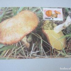 Postales: POSTAL SAN SEBASTIAN ( GUIPUZCOA ). Lote 146628014