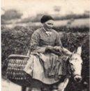 Postales: POSTAL PAIS VASCO FRANCÉS TIPOS VASCOS PAYSANNE BASQUAISE - EDITOR ND. NUEVA VER FOTOS. Lote 146757550