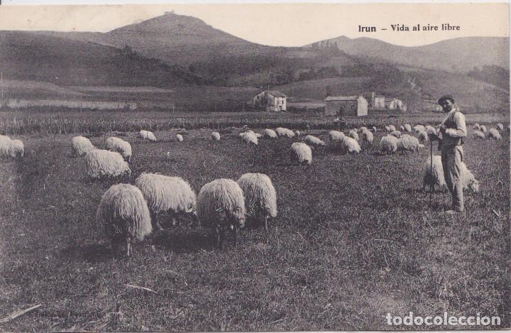 IRUN (GUIPUZCOA) - VIDA AL AIRE LIBRE (Postales - España - Pais Vasco Antigua (hasta 1939))