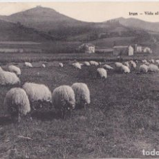 Postales: IRUN (GUIPUZCOA) - VIDA AL AIRE LIBRE. Lote 151652962