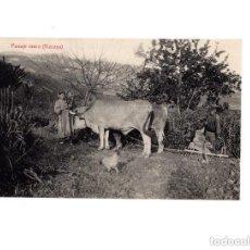 Postales: PAISAJE VASCO.(VIZCAYA).. Lote 154419910
