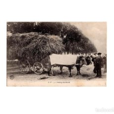 Postales: ATTELAGE DE BOEUFS.. Lote 166132246