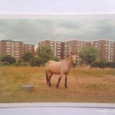 Postales: GETXO - OTRAS POSTALES - BESTE POSTALAK - ASIER MENTXAKA 2007 - LG BI-2436-07. Lote 206950687