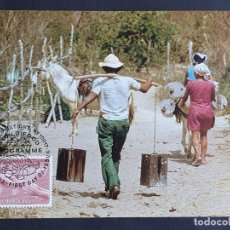 Postales: TARJETA MÁXIMA ONU NEW YORK - FAO PROGRAMA MUNDIAL ALIMENTOS, LUGAREÑOS TRANSPORTANDO AGUA, (BRASIL). Lote 243844620