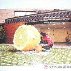 Postales: VOLKSWAGEN-QUIERO UN POLO-2007. Lote 25389084