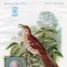 Postales: TARJETA PUBLICITARIA MAQUINA DE COSER SINGER SEWING MACHINES AÑO 1927 AVES DE AMÉRICA THRASHER BROWN. Lote 26899772
