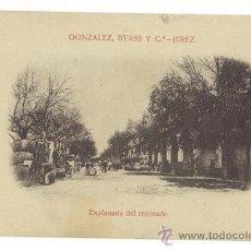 Postales: JEREZ DE LA FRONTERA - CADIZ - GONZALEZ,BYASS Y CIA.-EXPLANADA DEL ENVINADO. Lote 26918867