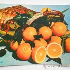 Postales: POSTAL DE PROPAGANDA TURISTICA DE ESPAÑA TEMATICA NARANJAS -VARIEDAD DE NARANJAS SALUS AÑOS 60 . Lote 35668637