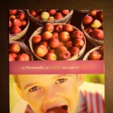 Postales: 7852 PUBLICIDAD PUBLICITY NORMANDIE NORMANDIA POSTCARD POSTAL AÑOS 80 ESCRITA - TENGO MAS POSTALES. Lote 36514476