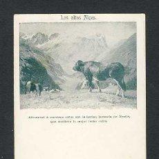 Postales: POSTAL PUBLICITARIA DE LECHE NESTLE. Lote 40605269