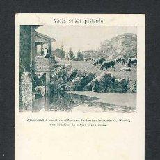 Postales: POSTAL PUBLICITARIA DE LECHE NESTLE. Lote 40605329