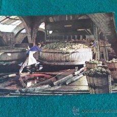 Postales: POSTALES-D8-CAVAS CODORNIU. Lote 29597526