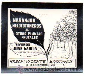 POSTALITA PUBLICIDAD VIVEROS JUAN GARCIA. MURCIA. PUBLICIDAD SEGUI. FOTO FIJA, LEER . (Postales - Postales Temáticas - Publicitarias)