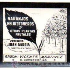Postales: POSTALITA PUBLICIDAD VIVEROS JUAN GARCIA. MURCIA. PUBLICIDAD SEGUI. FOTO FIJA, LEER .. Lote 46621764