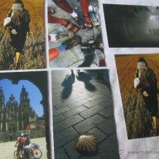 Postales: LOTE 6 POSTALES-CAMINO DE SANTIAGO-NUEVAS-SIN CIRCULAR-VER FOTOS.. Lote 46641946