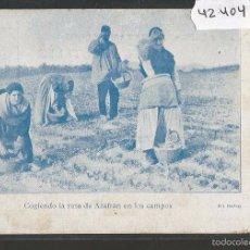 Postales: POSTAL PUBLICITARIA AZAFRANES JAIME AMATLLER - BARCELONA -REVERSO SIN DIVIDIR -(42.404). Lote 56129508