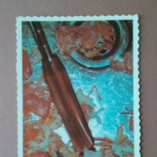 Postales: POSTAL TARJETA EL 2000 NO VA A CAMBIAR NADA 15/24. BOOMERANG. FREE CARDS. ARGENTINA. SIN CIRCULAR.. Lote 56619009