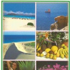 Postales: ** PV1375 - POSTAL - HOLIDAY EXOTICAS - ISLAS CANARIAS. Lote 56912291