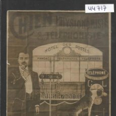 Postales: POSTAL PROFESOR GIORSETTI - CHIEN PHYSIONOMISTE TELEFHONISTE -VER REVERSO -( 44.717). Lote 62374712