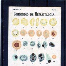 Postales: POSTAL PUBLICITARIA =COMPENDIO DE HEMATOLOGIA=LEER DESCRIPCIÓN-VER FOTO ADICIONAL DEL REVERSO .. Lote 95799839