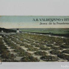 Postales: POSTAL PUBLICITARIA - A.R VALDESPINO Y HERMANOS /JEREZ DE LA FRONTERA - ED. MANES & CO, BERLIN. Lote 115093975