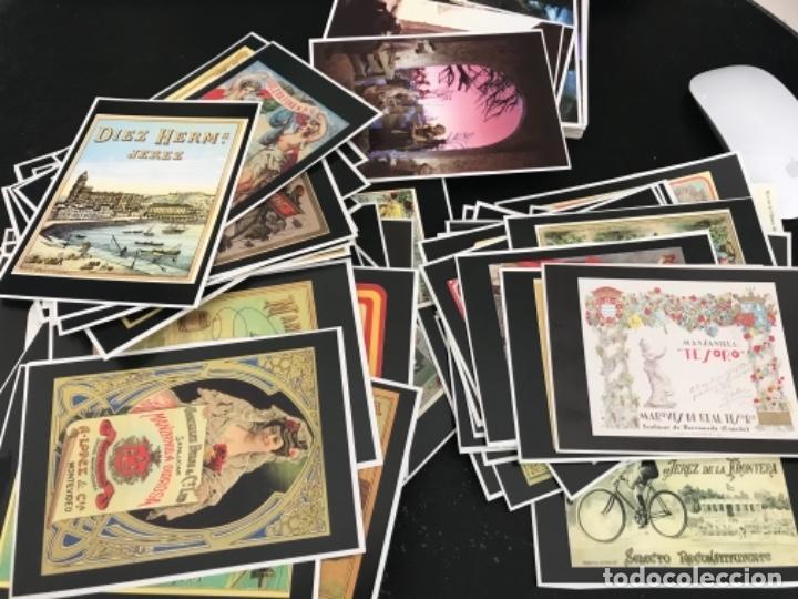 LOTE DE 179 POSTALES EDITADAS POR PUBLICACIONES DEL SUR (Postales - Postales Temáticas - Publicitarias)