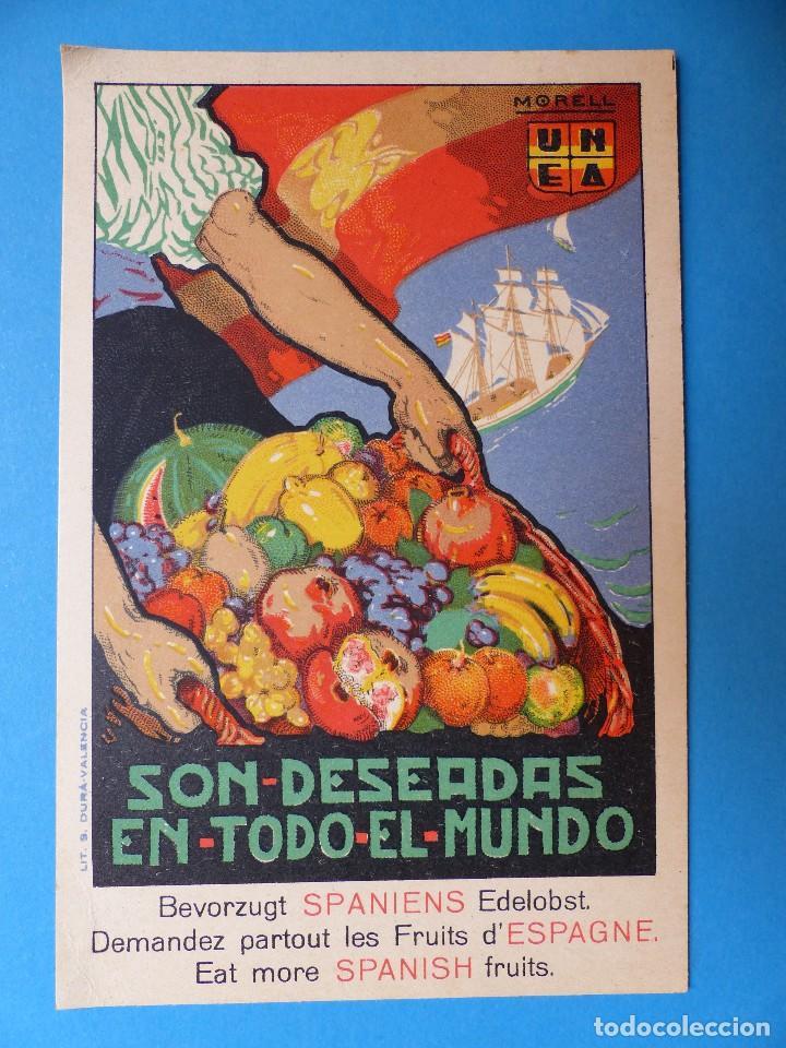 Postales: 3 BONITAS POSTALES PUBLICITARIAS DE FRUTA - MORELL, PENAGOS - Foto 6 - 130425422