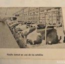 Postales: ANTIGUA POSTAL LECHE COMPENSADAS VENTOSILLA. Lote 148599501