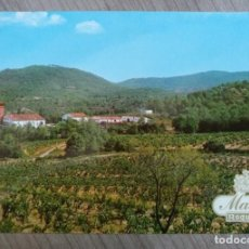 Postales: POSTAL PUBLICITARIA MASIA ROQUETA - BODEGA, BODEGAS . Lote 157960182