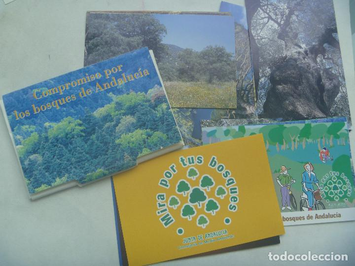 COLECCION 18 POSTALES PUBLICITARIA JUNTA DE ANDALUCIA: COMPROMISO POR LOS BOSQUES, MIRA POR TUS BOSQ (Postales - Postales Temáticas - Publicitarias)