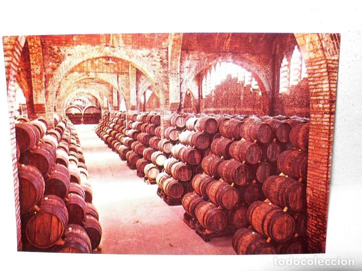 Postales: ANTIGUA CARPETA POSTALES CODORNIU - Foto 5 - 165241546