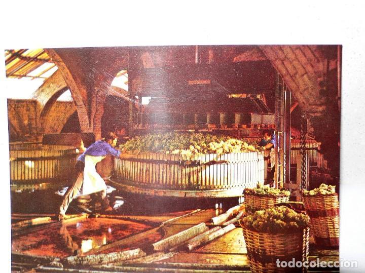 Postales: ANTIGUA CARPETA POSTALES CODORNIU - Foto 7 - 165241546