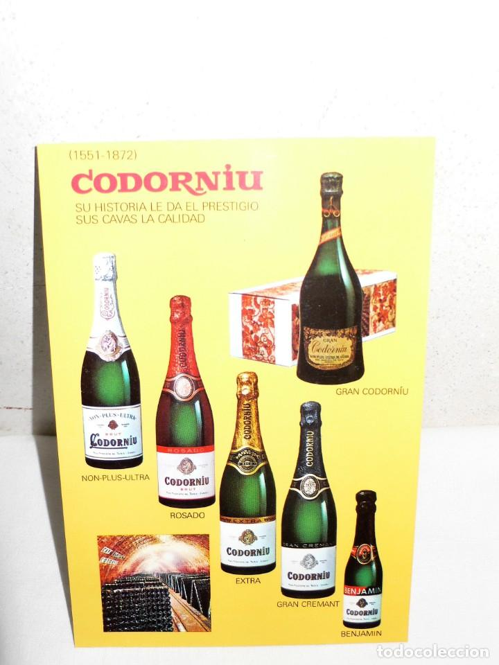 Postales: ANTIGUA CARPETA POSTALES CODORNIU - Foto 12 - 165241546