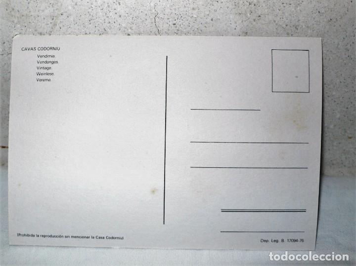 Postales: ANTIGUA CARPETA POSTALES CODORNIU - Foto 13 - 165241546