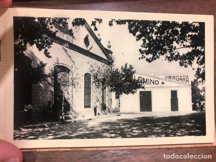 Postales: LIBRO CON POSTALES PALOMINO & VERGARA - JEREZ DE LA FRONTERA - Foto 2 - 172066248
