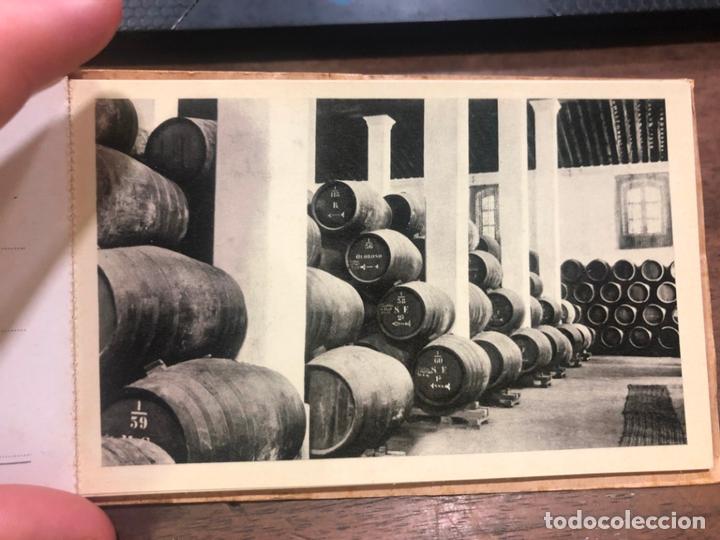 Postales: LIBRO CON POSTALES PALOMINO & VERGARA - JEREZ DE LA FRONTERA - Foto 3 - 172066248