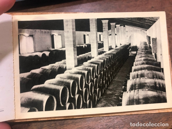 Postales: LIBRO CON POSTALES PALOMINO & VERGARA - JEREZ DE LA FRONTERA - Foto 4 - 172066248
