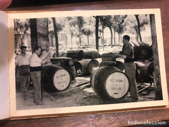 Postales: LIBRO CON POSTALES PALOMINO & VERGARA - JEREZ DE LA FRONTERA - Foto 5 - 172066248