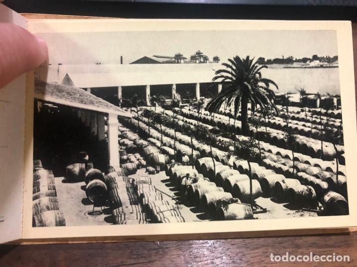 Postales: LIBRO CON POSTALES PALOMINO & VERGARA - JEREZ DE LA FRONTERA - Foto 6 - 172066248