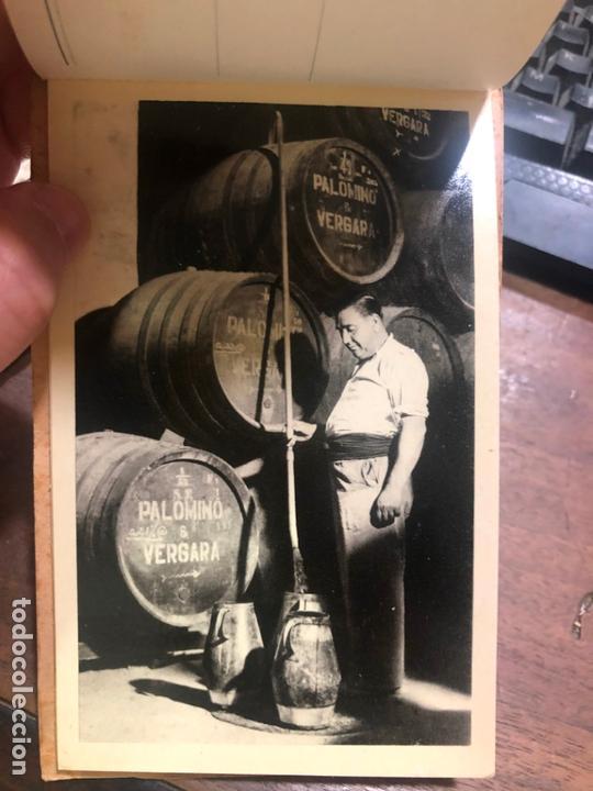 Postales: LIBRO CON POSTALES PALOMINO & VERGARA - JEREZ DE LA FRONTERA - Foto 7 - 172066248
