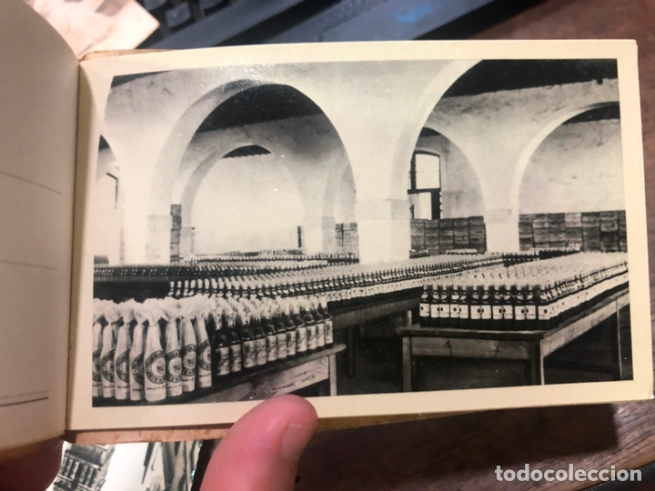 Postales: LIBRO CON POSTALES PALOMINO & VERGARA - JEREZ DE LA FRONTERA - Foto 8 - 172066248