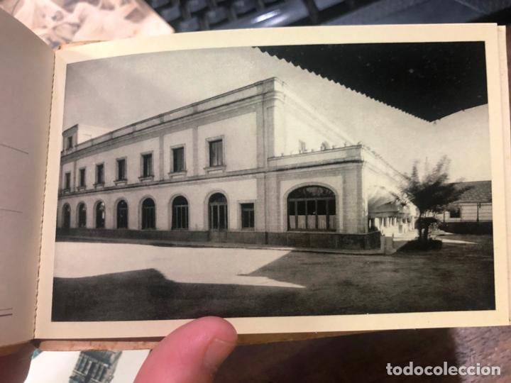 Postales: LIBRO CON POSTALES PALOMINO & VERGARA - JEREZ DE LA FRONTERA - Foto 9 - 172066248