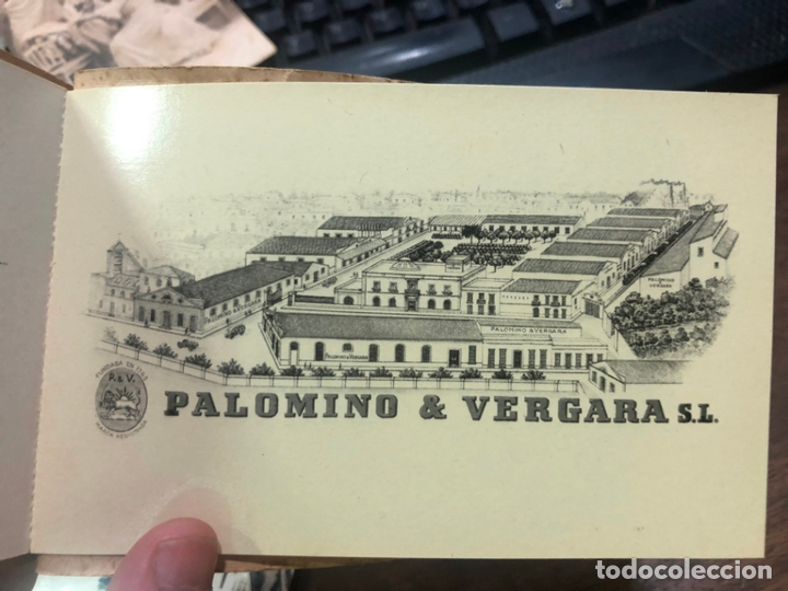 Postales: LIBRO CON POSTALES PALOMINO & VERGARA - JEREZ DE LA FRONTERA - Foto 11 - 172066248
