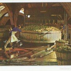 Postales: LOTE DE 8 POSTALES PUBLICITARIAS ANTIGUAS CAVAS CODORNIU SAN SADURNY DE NOYA- AÑO 1976-SIN CIRCULAR. Lote 172788287