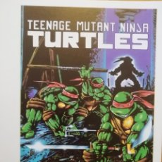 Postales: TEENAGE MUTANT NINJA TURTLES. Lote 173984394