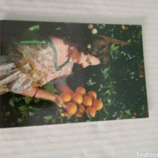 Postales: LABRADORA VALENCIANA. Lote 183549240
